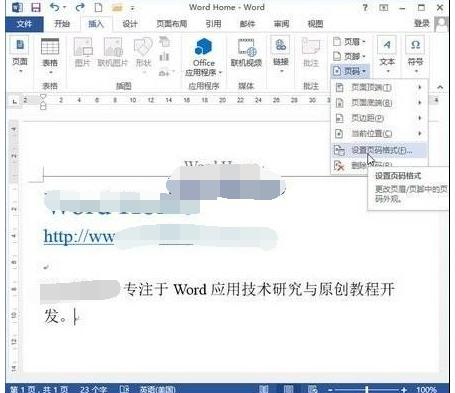 怎样设置Word2013文档的页码格式